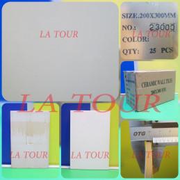 FAIENCE CHINOIS 20x30  BLANC