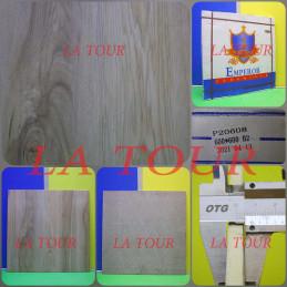 GRES POLI CHINOIS 60x60...